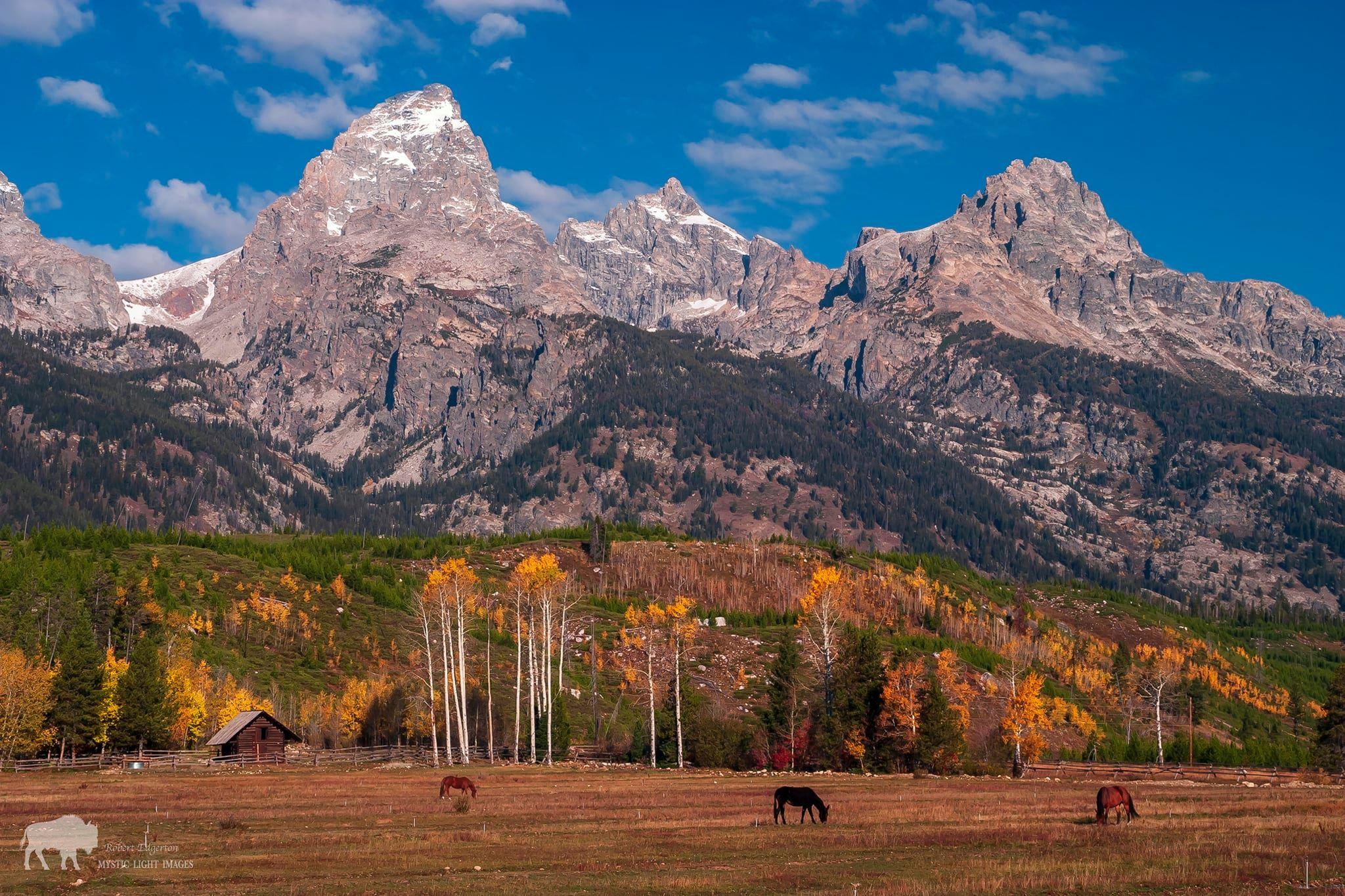 Grand Teton National Park Fall Season
