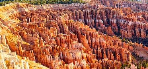 Welcome to Bryce Canyon National Park