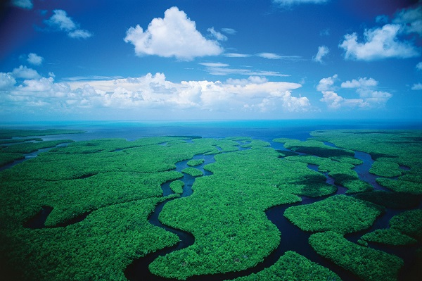 City Of South Gate >> Welcome to Everglades National Park