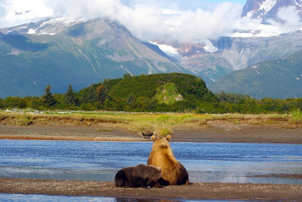 Welcome to Katmai National Park