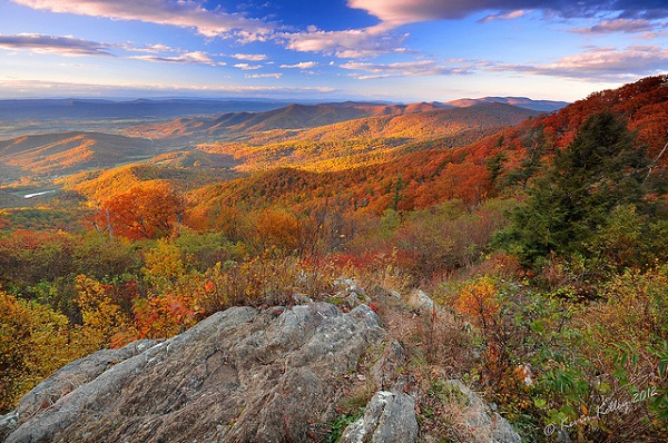 Welcome to Shenandoah National Park