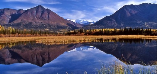 Welcome to Wrangell St Elias National Park