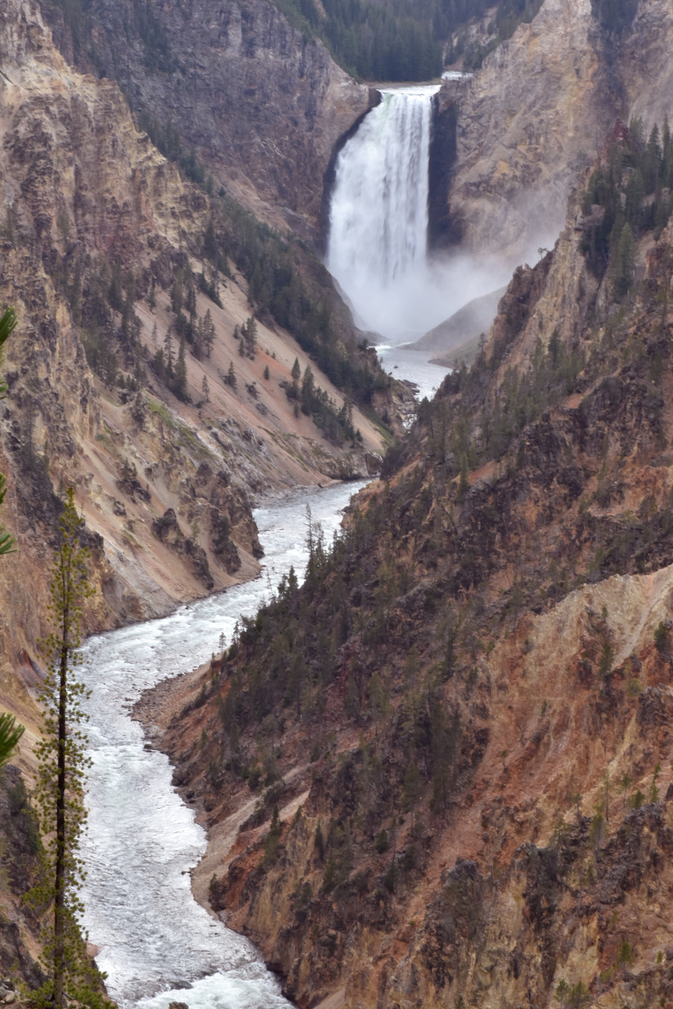 Yellowstone National Park image 1