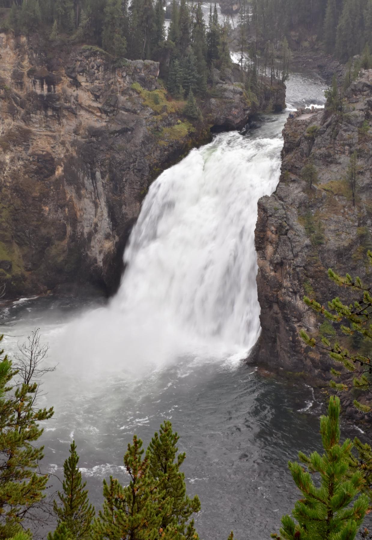 Yellowstone National Park image 3