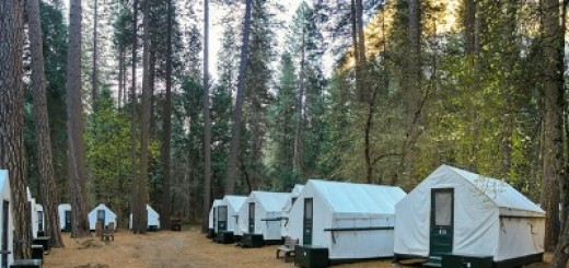 Yosemite National Park Camping